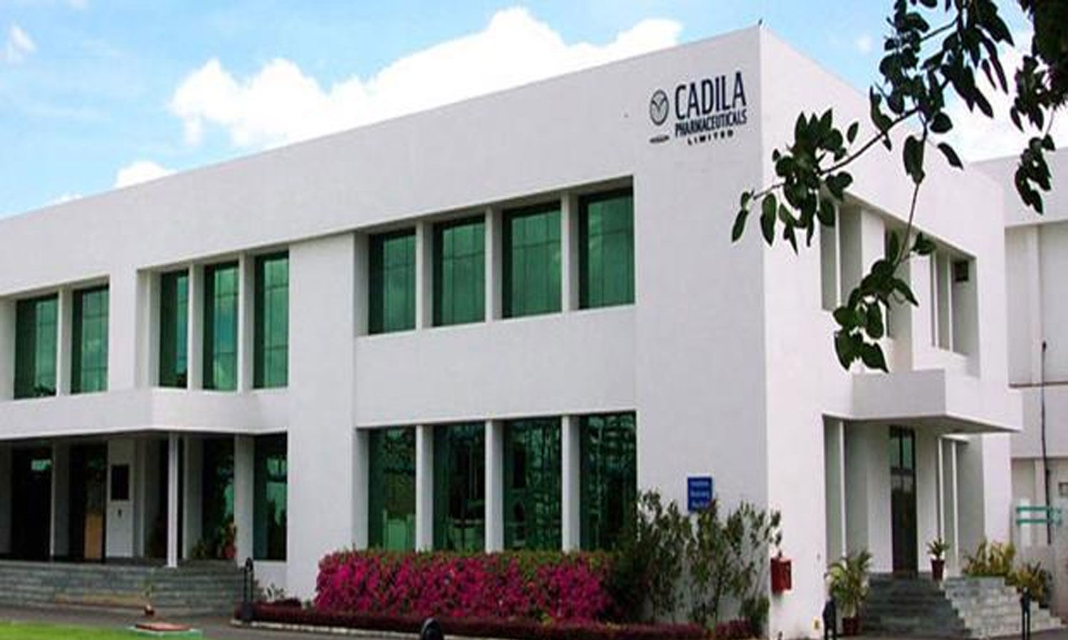 Cadila Healthcare BOD approves transfer of Animal Healthcare Business to Zydus Animal Health and Investments Limited